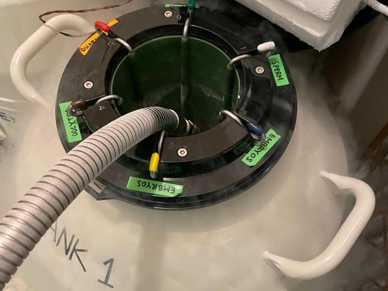 cryopreservation tank San Diego